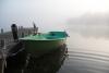 Miglains rīts pie Zvirgzdu ezera Kurzemē