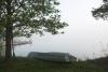 Zvirgzdu ezers. Skaists, miglains rīts Ezermaļos