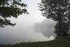 Zvirgzdu ezers Kurzemē. Skaists, miglains rīts