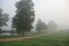 Rīta migla pie Zvirgzdu ezera