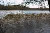 Rudens pie Zvirgzdu ezera
