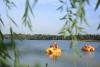 Jaunie velokatamarāni Zvirgzdu ezerā